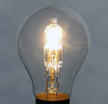 Call to Delay Phase-out of Domestic Halogen Lamps