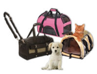 If You Are Planning Airline Travel,The First Thing You Need to Do Is to Measure Your Pet
