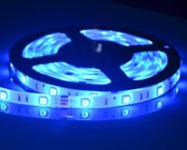 Blue LEDs' Promise in Preserving Foods in Fridges