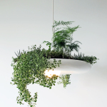 Ryan Taylor Made an Organic Chandelier Allows Favorite Plants and Herbs to Grow Indoors