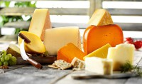 DSM Introduces New Culture to Decrease Cheese Ripening Time