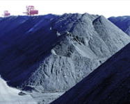June Thermal Coal Imports Slow to 4-Month Low