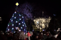 National Christmas Tree on Display in Front of The White House Will Feature GE's Holiday