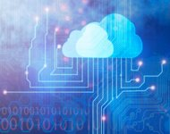 Security Is Not Only Thing Overlooked by Eager Adopters of Cloud-Based Services