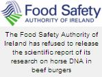 Doubts Was Raised About Validity of DNA Analysis That Detected Horse Meat in Burgers