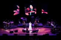 Pixelfle LED Curtains Are Giving India.Arie's Tour a Different and Updated Set of Visuals