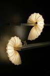 Aqua Creations Design Studio Uses The Essence of The Feminine Way