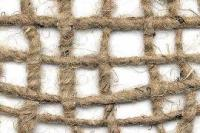 Increasing Amount of Jute Import From Bangladesh Is a Matter of Concern for The Indian