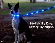 Dog-E-Glow Has Launched a Series of LED Dog Leashes