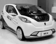 Electric Car Market Yet to Mature
