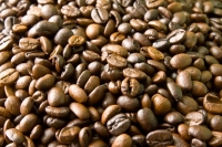 Mzb Group Has Opened Its New Coffee Roasting Plant in Vietnam