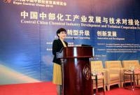 Central China Chemical Industry Development and Technical Cooperation Forum Successfully Held in Wuhan