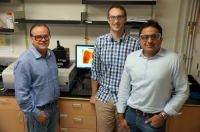 Breakthrough of Phosphor Research