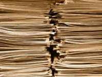 UHB NHS Foundation Trust Was Overloaded with Case Notes and Referrals in Paper Form