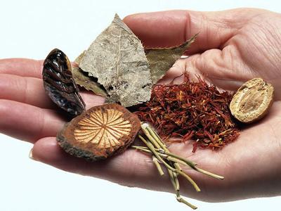Major Traditional Chinese Medicine Maker H1 Profit up 45.2%