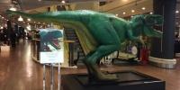 Giant Schleich Dinosaur Finds Home in Dublin