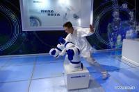 Robots Highlight The World Robot Exhibition