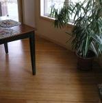 Bamboo Flooring Is a Green Flooring Alternative