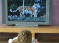 Ensure Any TV in Your Home Is Installed in a Way That Doesn't Pose a Hazard to Kids