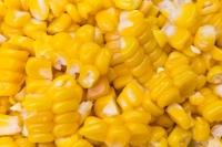 Cargill Foods Established The Company's First Maize Unit in India