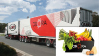 Orora Adds Xsense to Its Cold-Chain Solution
