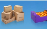 Smurfit Kappa Said OCCG's Strong Strategic Fit with The Corrugated Firm