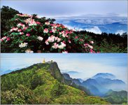 Emei Mountain Popular on May Day Holiday