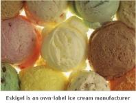 R&R Ice Cream Has Acquired Italian Ice Cream Manufacturer Eskigel