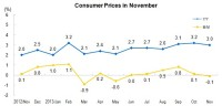 In November, The Consumer Price Index (CPI) Went up by 3.0 Percent Year-on-Year