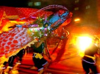 "Maonan People Have Many Special Festivals and The Grandest One Is ""Fenlong Festival"""