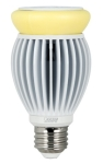 Intematix Corporation,and Feit Electric,Announced a 100-Watt Equivalent LED Light Bulb
