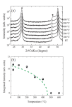 Tokyo Institute of Technology Researchers Unravel Ferroelectric Properties in HfO2 Thin Films