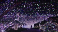 Janean and David Richards' Display Uses 502,165 LED Lights to Decorate David's House