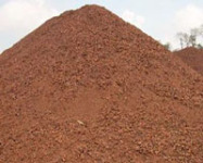 China's Iron Ore Import Prices to Come Under Pressure in March