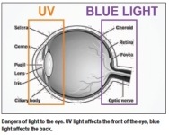Too Much Blue Light Can Cause Permanent Damage to The Eyes