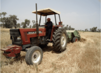 Iraq Needs Investment of More Than $20 Billion to Upgrade The Agricultural Sector