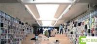 Bookstore Needs Bright Lighting
