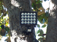 Introduce High-Intensity LED Security Light