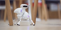 Antbo, a Buildable Insect That Helps Kids Grasp Robotics, Hits Indiegogo