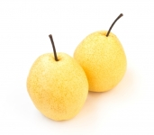 Capespan Improves Fruit Packing Capability