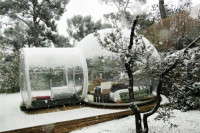 Bubbletree - Close to The Nature