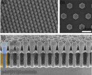 Researchers in Japan Have Created Indium Phosphide Nanowire Solar Cell