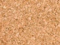 Facts on Cork Flooring