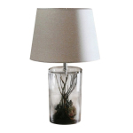 Create Your Secret World Within The Sacred Space of Roost's Terrarium Table Lamp