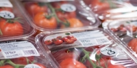 APS Salads Deployed New Packaging Machinery for Tomato Packaging