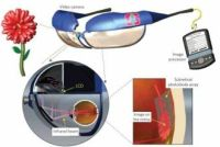 An Implanted Subretinal Array Could Restore Useful Sight to Patients Blinded