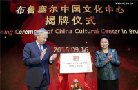 Chinese Cultural Center Inaugurated in Belgium