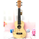 The Possible Reasons for Ukulele's Popularity