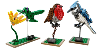 LEGO Birds to Land in January 2015