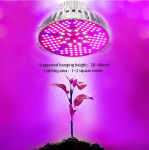 All About Grow Lights That Run on LED Technology